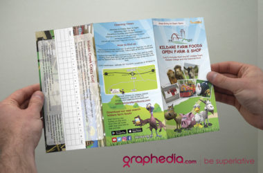 Kildare Farm Foods Brochure Design