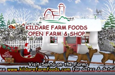 Kildare Farm Foods Christmas Video Promotion