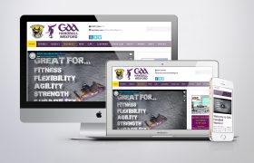 Wexford GAA Handball