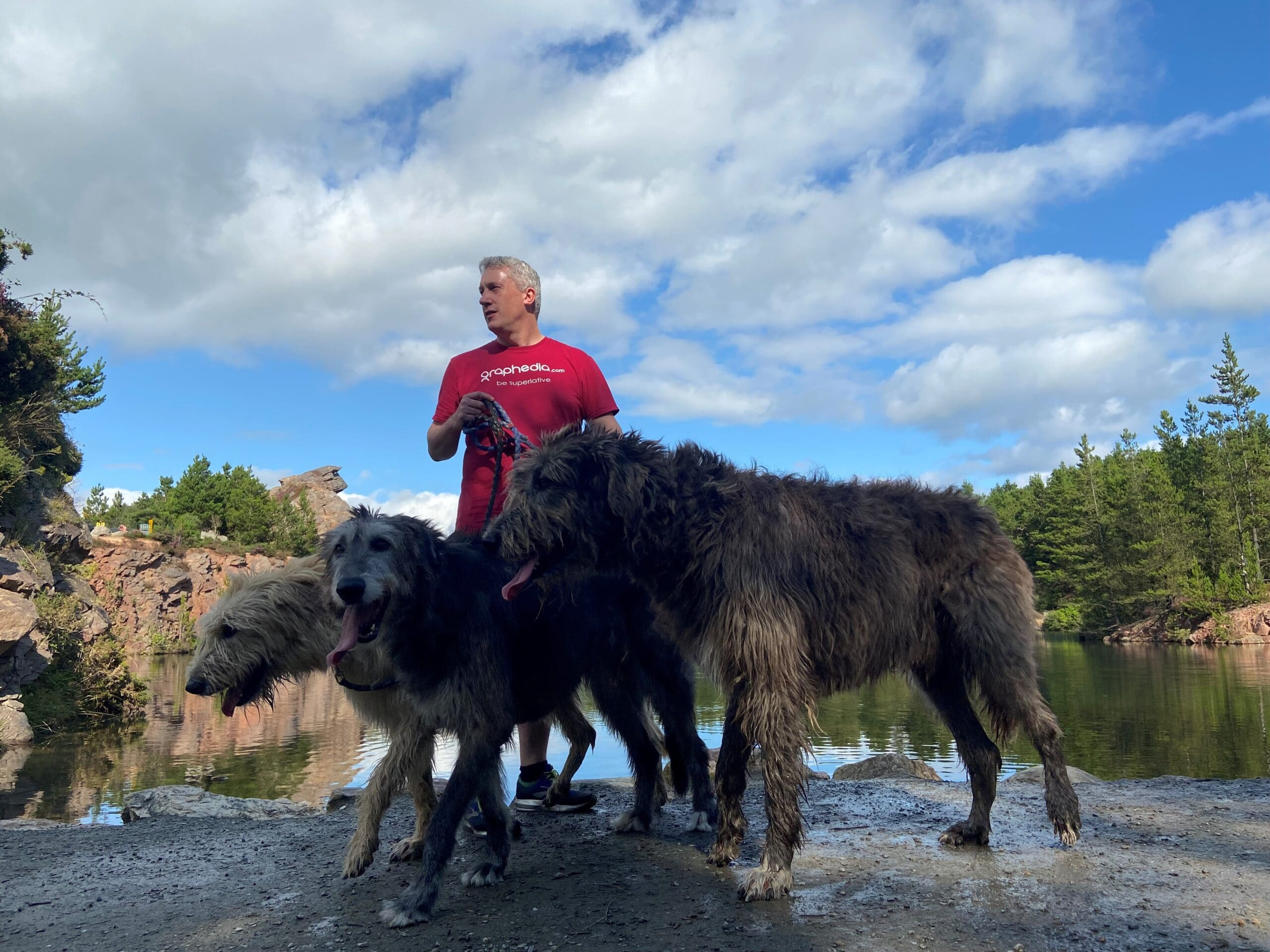Niall Reck (graphedia) with 3 Irish Wolfhounds