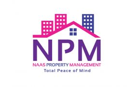 Naas Property Management Logo Design