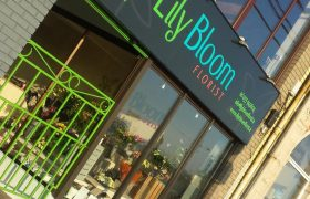 Lily Bloom Florist Shop Front Design